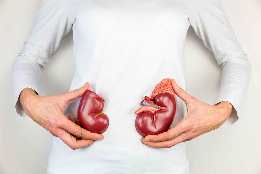 Home Care Services in East Lansing MI: Kidney Health in the Aging: Warning Signs to Watch For